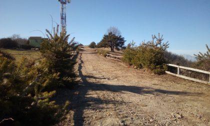 Al via la manutenzione dell'ambiente a Monte Bignone