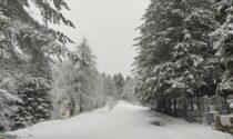 Nevicata fuori stagione nell'entroterra della provincia di Imperia