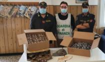 Guardia di Finanza sequestra oltre 32 chili di hashish a Ventimiglia