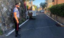 Ladri provocano incidente e perdono il cassone nella fuga