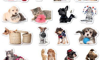 Originali stickers in regalo con La Riviera