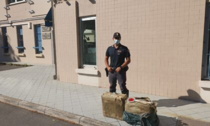 Conducente di tir arrestato con 363 kg di droga