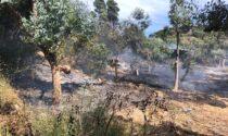 Incendio vicino alle case ad Artallo di Imperia, chiusa l'Autofiori per fumo