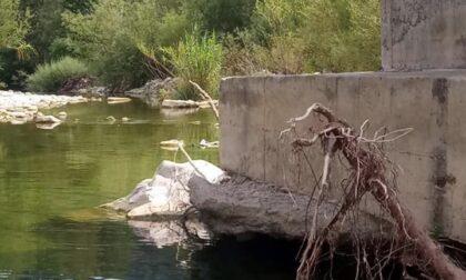 Agibilità a rischio: vigili del fuoco chiudono in via cautelare il ponte di Calvo