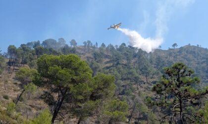 Incendio lungo la statale 20 tra Olivetta e Airole: vigili del fuoco ed elicottero in azione