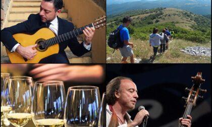 Musica dal vivo, teatro e degustazioni, ecco gli eventi del fine settimana