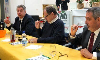 """Expo Valle Arroscia, Paolo Massobrio al primo """"Ormeascolab"""""""