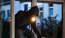 Giovane in manette per tentato furto e resistenza