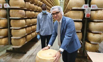 Il Grana Padano Alberti festeggia 50 anni
