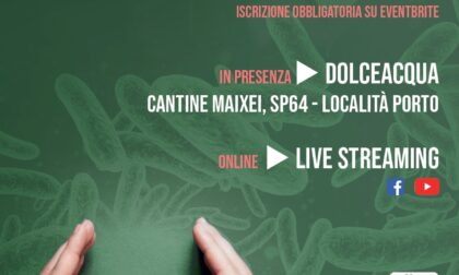 Le strategie contro il biofilm microbico sulle salamoie delle olive da mensa - Il progetto