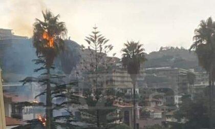 Decine di interventi dei vigili del fuoco per i danni del maltempo