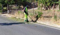 Intervento di sfalcio della strada provinciale e di tutti i marciapiedi