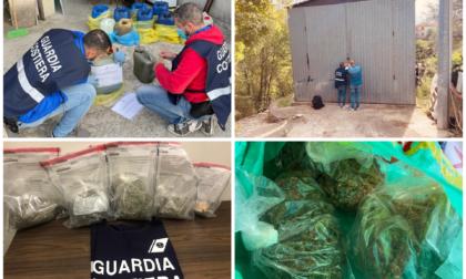 Furto di gasolio dal battello e produzione di marijuana: un arresto e denuncia