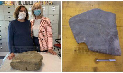"""Scoperto a Sanremo fossile di due ricci che """"fanno l'amore"""" risalente a 70 milioni di anni fa"""